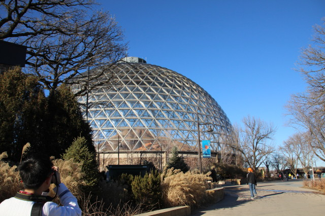 奥马哈的动物园(一)